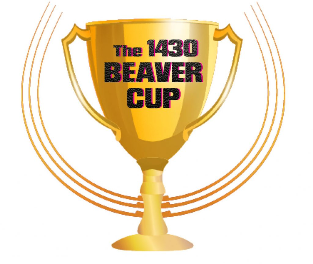 beaver-cup